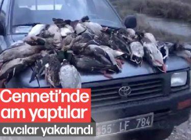 Yaban ördeği avcılarına ceza