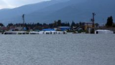 Amik Ovası'nda tarlaları su bastı