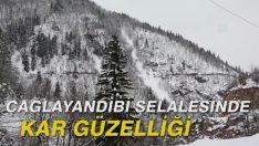 Çağlayandibi Şelalesinde kar güzelliği