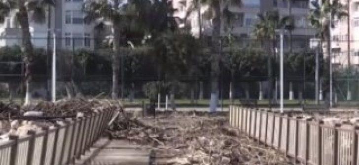 Fırtınanın sürüklediği odunları değerlendirdiler