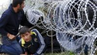 Hungary to free Syrian involved in 2015 border riots