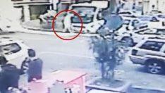 İstanbul'un ortasında terör estirdi