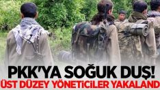 PKK' nın Üst düzey ismi yakalandı