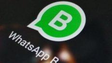 WhatsApp Business iOS için yayınlandı