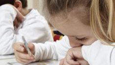 Aydın Karacasu'da okullar tatil edildi