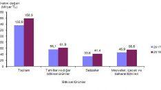 Kuru Soğan Fiyatı Bir Önceki Yıla Göre %67,7 Oranında Arttı