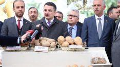 """Bakan Pakdemirli: """"Taraftar Patatesler Yakın Zamanda Piyasaya Çıkacak"""""""