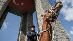 Şehitleri Anma Günü için eğitimli atlar hazır