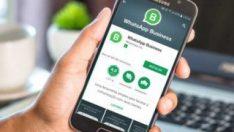 WhatsApp Business iPhone'lar için de yayınlanacak