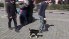 Yavru keçiyle yürüyüş yapan Trabzonlu